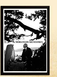 Assista no Telecine Play: Morangos Silvestres